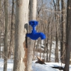 <em>Blue Faucet on Tree</em>, 2011<br> Felt and tree<br> 8 x 3.1 x 1.5 inches