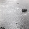 Arthur Ou<br> <em>Untitled (Point Reyes)</em>, 2011<br> Gelatin silver print<br> 8 x 10 inches